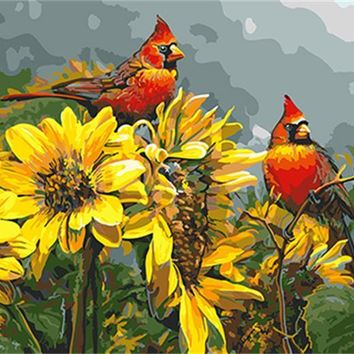 DRAWJOY Framed Oil Paint DIY Painting By Numbers Of Bird Coloring By Numbers Home Decoration For Living Room Wall Art