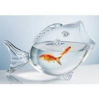 CLEAR FISH BOWL - CLEAR FISH SHAPED BOWL