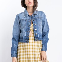 Springtime Staple Denim Jacket