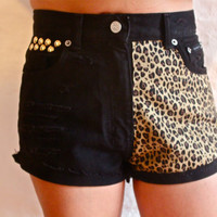 Black High Waisted Cut off Animal print detail Studded Jean Shorts
