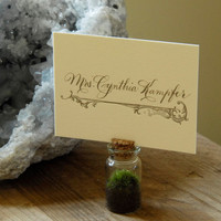 Wedding Favors & Place Card Holders // Rustic Wedding - Spring Wedding - Garden Party - Mini Moss Terrarium