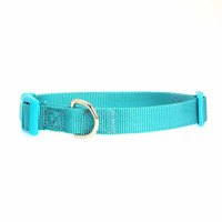 Nylon Dog Collar by Zach and Zoey