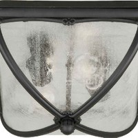 Forte Lighting 1823-02-04 Outdoor Flush Mount with Clear Seeded Glass Shades, Black