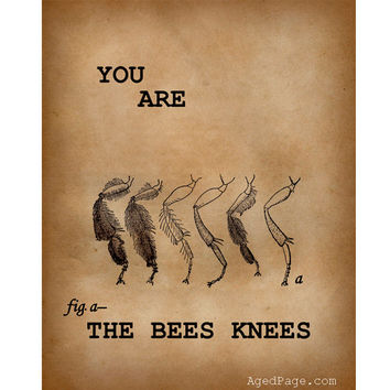 Insect Print, Art Illustration,Wall Decor, Home and Living, You Are The Bee's Knees, 8 x 10""