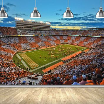 Tennessee Stadium Wall Mural Peel and Stick