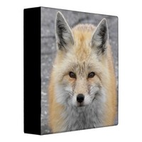 Red Fox Vinyl Binders