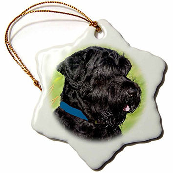 3dRose LLC orn_4411_1 Black Russian Terrier Snowflake Porcelain Hanging Ornament, 3-Inch