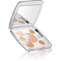 shade play - concealer mixing palette - em michelle phan