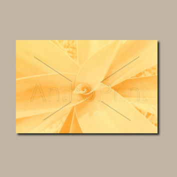Orange Canvas Print Wall Art. Modern Anthotype Wall Decor Art Piece for your Prints Ideas.