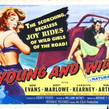 Young And Wild Movie Poster 24x36