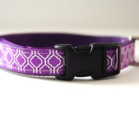 Purple Dog Collar Adjustable Sizes (XS, S, M)