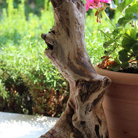 Unique Driftwood Sculpture With Smile / Laughing Face , Natural Art , Drift Wood Garden Decoration