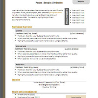 Resume Template / CV Template for MS Word / Professional and Modern Resume Design / Instant Digital Download / Mac or PC / Resume Handbook