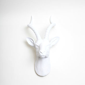 The Franny in White  - White Gazelle Head - White Faux Taxidermy - Antelope Faux Taxidermy - Chic & Trendy