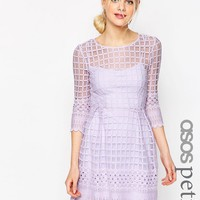 ASOS PETITE Mesh Skater Dress With Embroidered Border