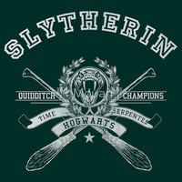 Slytherin - Quidditch Champions Tee by Mouan