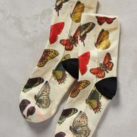 Flutter By Ankle Socks by Stance Neutral Motif One Size Socks