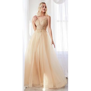 Long A-Line Dress Champagne Beaded Applique Bodice Layered Tulle Skirt