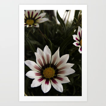 Flowers in summer Art Print by VanessaGF