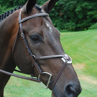 Red Barn Matrix Jumper Bridle