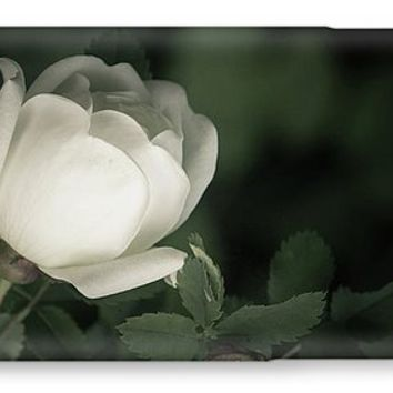 White Flower Of A Dogrose IPhone 7 Case