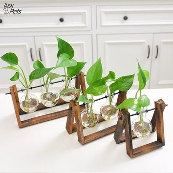 Creative Plant - Glass Terrarium (Wood Stand)