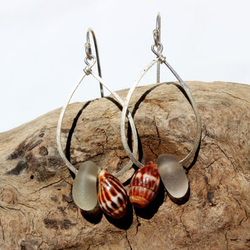 Hawaiian Small Clear Beach Glass with Gorgeous Tidal Snail Shells on Hammered 925 Sterling Silver Teardrop Wire Small Hoop Earrings