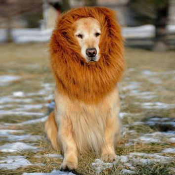 LION MANE WIG FOR YOUR DOG