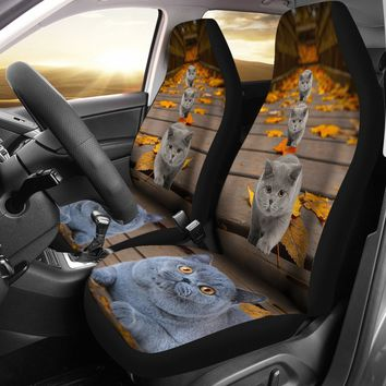 British Shorthair Cat Print Car Seat Covers-Free Shipping