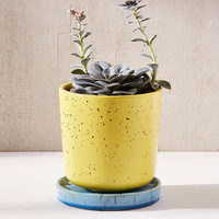 "Parker 6"" Planter + Drainage Tray Set 