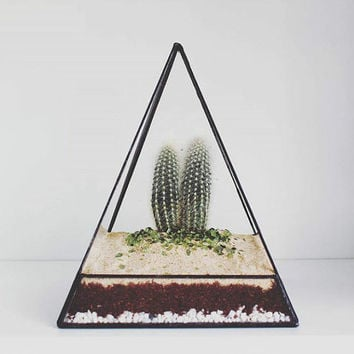 Geometric Terrarium / Pyramid Stained Glass / Glass Terrarium / Decoration / Modern Mirror / Airplant Terrarium / Planter / Glass Box