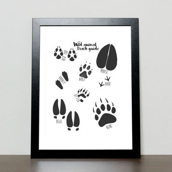 Animal Tracks print, Field Guide Animal Tracks Poster, printable 8x10 nursery art