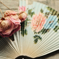 Still life photo- dried peony, pink, cream, vintage, shabby chic decor, pastel, hand fan, floral, flower photograph, fine art print, 8x10