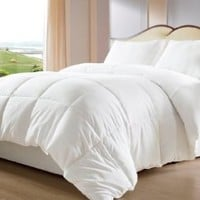 Bed-in-a-Bag White Down Alternative Comforter/Duvet Cover Insert, Twin, White
