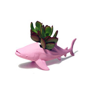 Up-cycled Baby Pink Whale Shark Planter