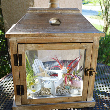 Beachy Lantern Terrarium ~ Nautical Decor ~ Wooden Lantern with Adirondack Chair ~ Knobby Starfish and Shells ~ Beach Decor ~ Gift Idea