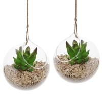 Set of 2 Decorative Clear Glass Globe / Hanging Air Plant Terrarium Planter / Candle Holder - MyGift®