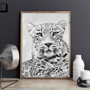 leopard photo print, leopard art, leopard print, animal print,animal poster, african animal print, leopard portrait, zoo animal nursery
