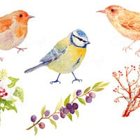 Digital watercolour british garden birds and  berries in snow instant download scrapbook watercolor cards christmas greeting cards (set2)