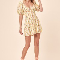 Atlanta Mini Dress – For Love & Lemons