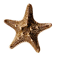 Bronze Star Fish Ring | Justine Brooks
