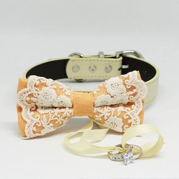 Burnt Orange Dog Bow Tie ring bearer, Pet Wedding accessory, Lace, Puppy Proposal