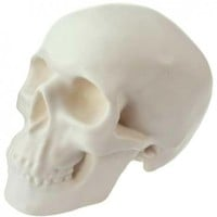 Skull Money Bank [White]