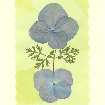 Real Pressed Flower Greeting Card - Birthday Card - Thank You Card - Note Card - Reiki charged