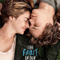 The Fault in Our Stars Movie Poster 11x17