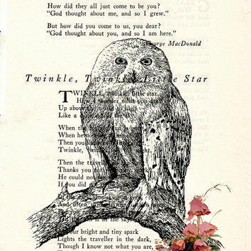 Owl on a Branch with Flowers Book Page Art Poem Page Art Vintage Page Art Print Upcycled Owl Print cp188