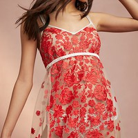Rose Embroidered Chemise