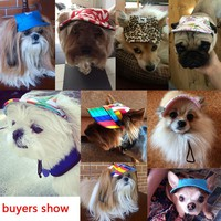 Cute Summer Hats for Dogs