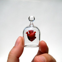 Anatomical Heart in a Jar, Hand Blown Glass Miniature, Anatomically Correct Heart