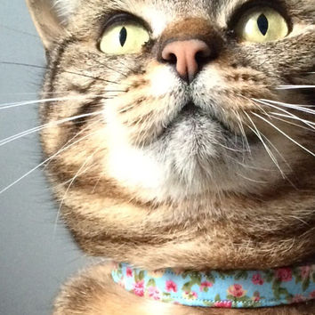 Floral Cat Collar Blue - safety clip
